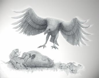 origen-evolucion-aves_image035